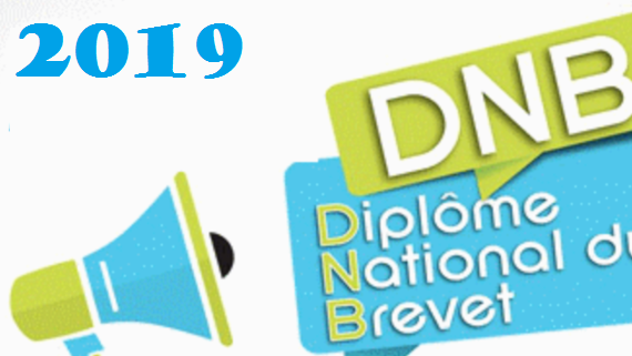 DNB 2019.png